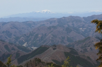 04稜線から浅間山.JPG