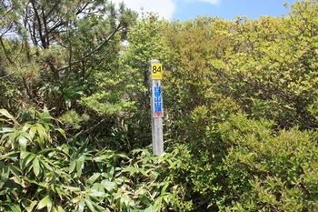 IMG_5594城笹山.JPG