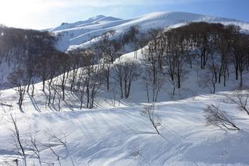 IMG_7055テントから朝日岳.JPG