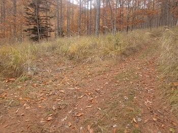 PB054553林道分岐2左へ.JPG